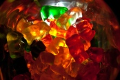 Photo courtesy of Steven Depolo/Flickr Flakka can take form as gummy bears.
